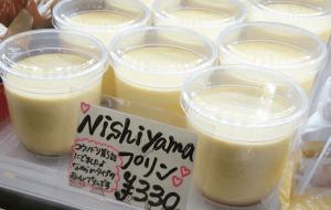 hoshinogen-shinomiya-pudding-05
